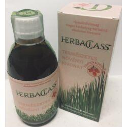 HerbaClass Természetes Növényi Kivonat – Homoktövismag