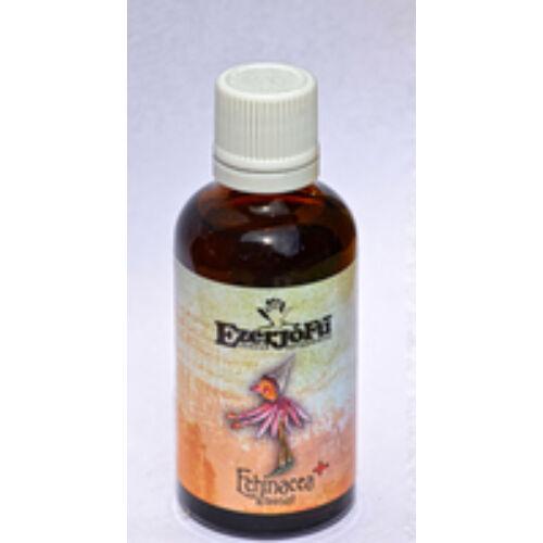 Echinacea plusz kivonat